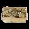 Oester Speciaal Reserve Nr 3 (tussen de 66 gr en 85 gr )