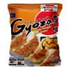 Gyoza Kip Groenten