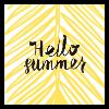 Servetten 33 x 33 hello summer