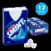 Mint xylitol sugarfree