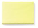 Placemats kiwi, 30 x 43 cm