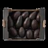 Grote avocado