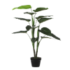 Philodendron in Pot groen 100xd70c